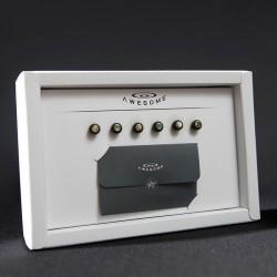 AweSome 奧昇裝置 吉他弦釘組 牛骨弦釘/黑檀木弦釘