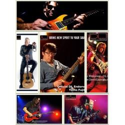 DL David Laboga 電吉他專用款導線 (3米雙邊直頭)