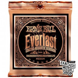Ernie Ball 2544 民謠吉他弦 Everlast (覆膜磷銅弦)