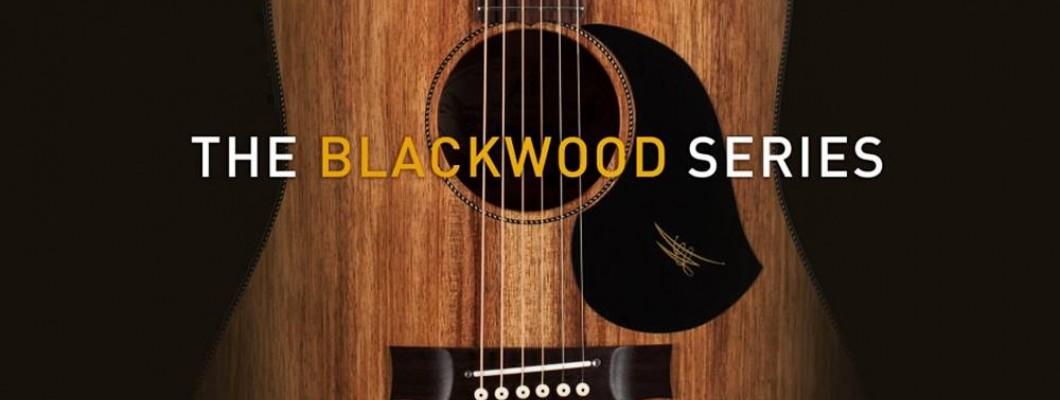 Maton吉他黑木系列抵台