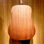 Sigma DM-ST+面單雲杉 桃花心木側背板