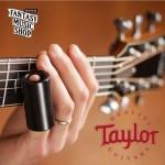 Taylor黑檀木滑管 (XL)